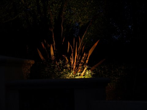 Calabasas Landscape Lighting Dramatic Lighting