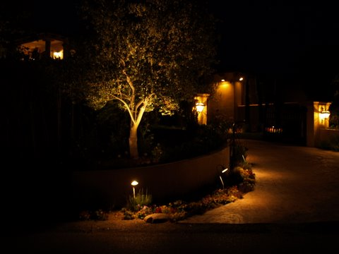 Calabasas Landscape Lighting Driveway