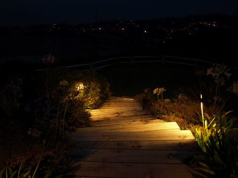 Calabasas Landscape Lighting Steps