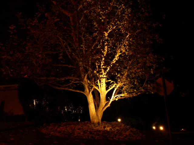 Calabasas Landscape Lighting Landscape Lighting