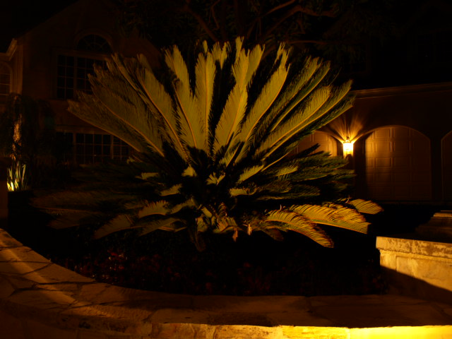Calabasas Landscape Lighting